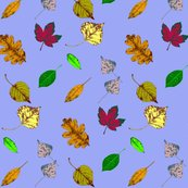 Rfloating_leaves_3_shop_thumb