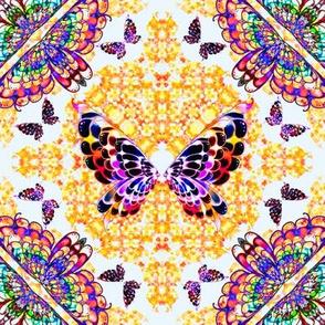58_Multibright_Butterflies_pt1