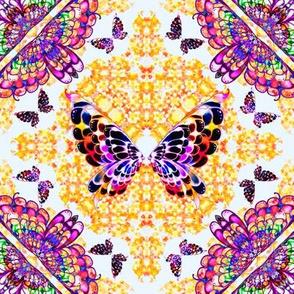 59_Multibright_Butterflies_pt1