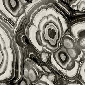 Malachite in Black and White