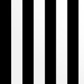 2.5 inch wide Black and White Stripes