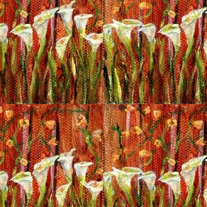 3_x_3_inch_white_calla_lilies