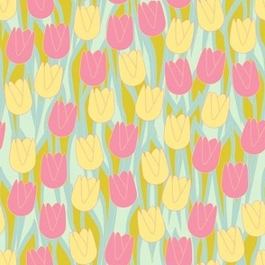 Tulips yellow pink