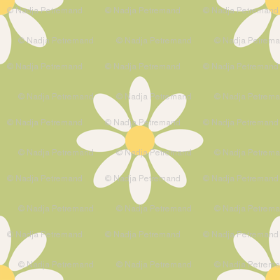 marguerite_fond_vert_L