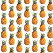 Rrpineapple_shop_thumb
