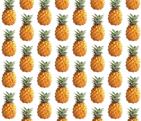 Rrrpineapple_shop_preview