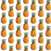 Rrrpineapple_shop_thumb