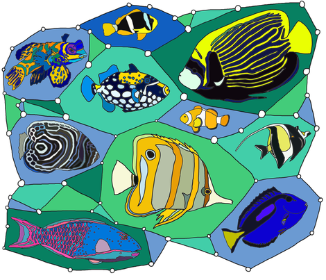 Great Reef Flashy Fashion  fabric by luckyrobin on Spoonflower - custom fabric