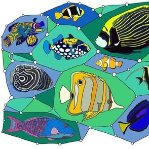 Great Reef Flashy Fashion