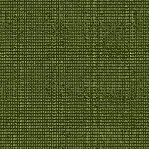 Computer Error - screen