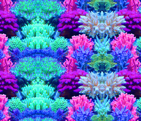ReefprintOnGrain fabric by shmoopie22 on Spoonflower - custom fabric