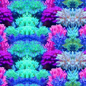 ReefprintOnGrain