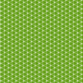 Triangle Gingham 2    -Apples Leaf Green and White