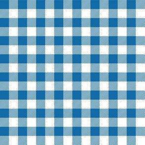 Gingham Blue half