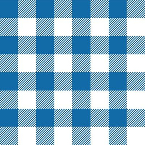 Gingham Blue One