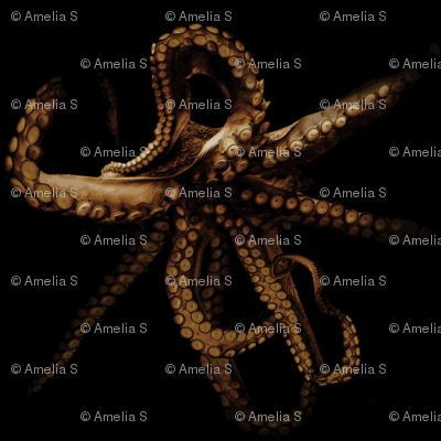 Out of the Depths, Octopus in Sepia