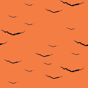 A_Crack_in_the_Fabric_-_black_on_orange