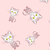 Pretty Kittens in Pale Pink