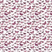 Flutter, Butterflies Magenta Smaller