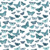 Flutter, Butterflies Turquoise