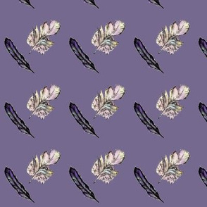Lilac Feathers