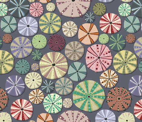 Sea Urchins fabric by crumpetsandcrabsticks on Spoonflower - custom fabric