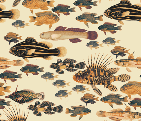 Tropical Fish fabric by juliakodlart on Spoonflower - custom fabric