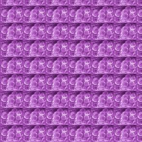 purple_roser