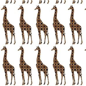 Modern Giraffe