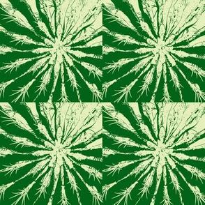 Desert Plant- greens- Four Easy Pieces