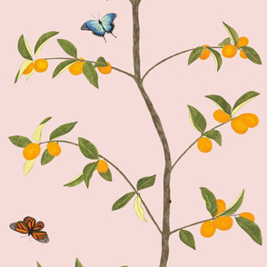Jenny kumquat on blush