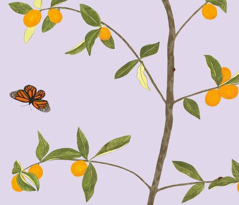 Jenny_kumquat_in_lavender_shop_preview