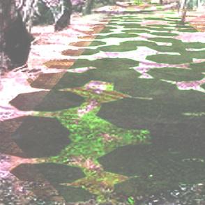 Umbrella Arbor