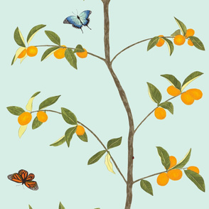 Jenny kumquat on mint