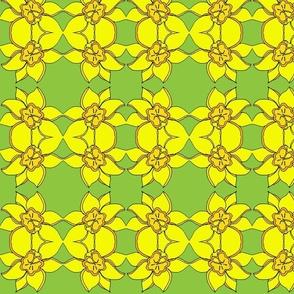 Daffodil Green-ch