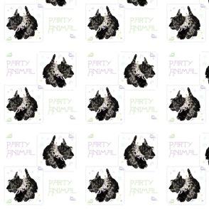 Scottish Terrier Party Animal