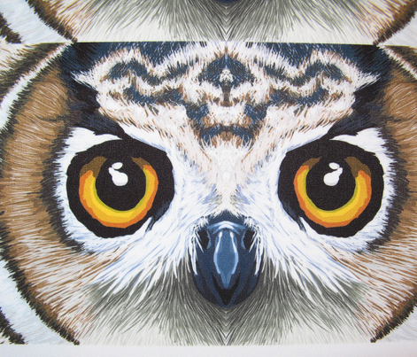 Owl_eyes_comment_421591_preview
