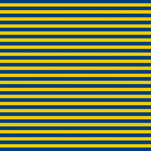 Navyblue_yellow