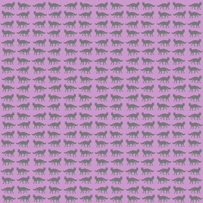 wolf in lavender