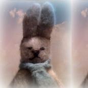 Mortimer Rabbit moosecat