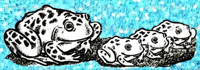 Frog School 3