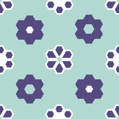 2_inch_lt_blue_purple_limited_and_white_hex flowers
