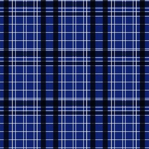 Police_Box_Plaid_5_v1_Lg