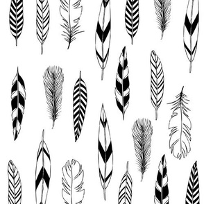 Feathers Black and White