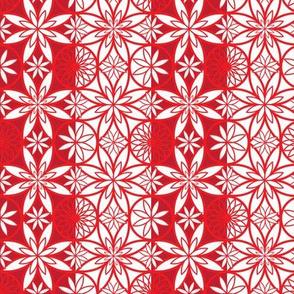 Oriental Poppy2