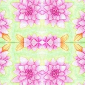 Traditonal Pink Lotus Flowers