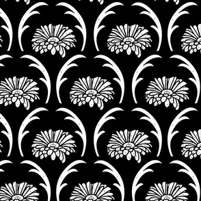 Gerbera black & white