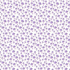 Little MUSHROOM Lavender