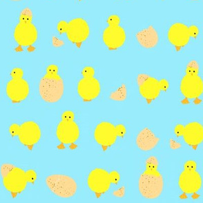 easter_chicks_on_turquoise_blue