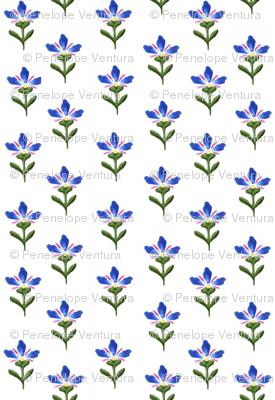 blueflowerprint